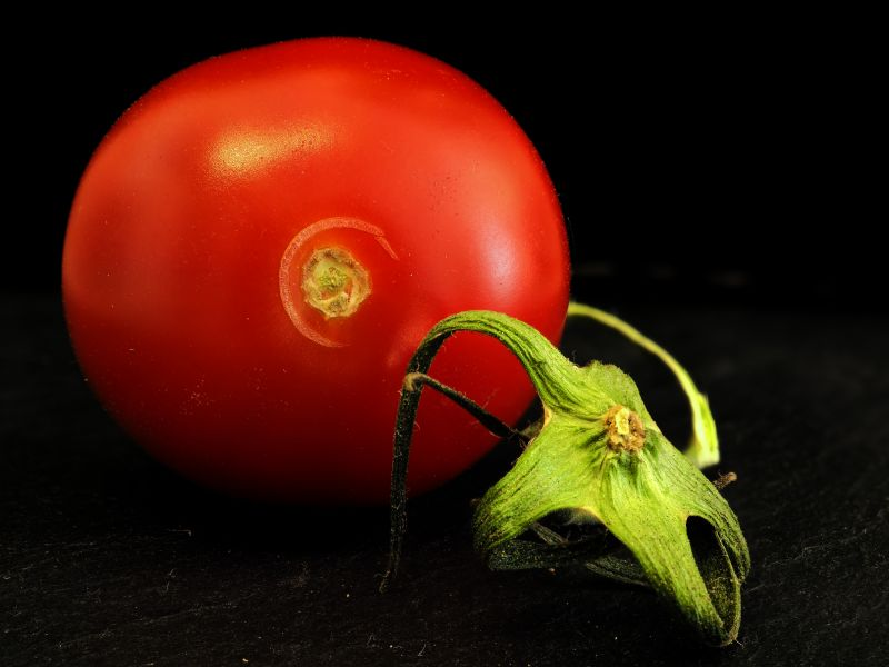 Tomate 3